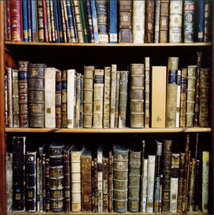 Library Books (Pouya sh at the English language Wikipedia [GFDL (http://www.gnu.org/copyleft/fdl.html) or CC-BY-SA-3.0 (http://creativecommons.org/licenses/by-sa/3.0/)], via Wikimedia Commons)